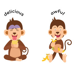 Opposite delicious and awful vector illustration