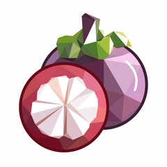 unusual and original mangosteen vector fruit