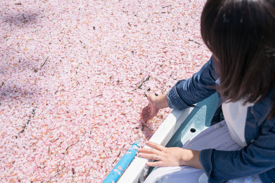 Woman sitting in boat while touching cherry blossom