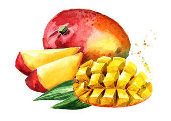 Mango fruit with mango cubes. Watercolor hand drawn illustration, isolated on white background