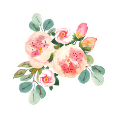 Bouquet with pink roses and peonies with green leaves on the white background. Watercolor romantic garden flowers. Card template with message Summer.