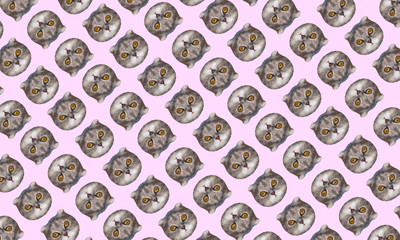 Funny cat's low polygonal heads on pink background. Fashion art collage pattern.