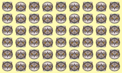 Funny low polygonal cat's heads on yellow background. Fashion art collage pattern.