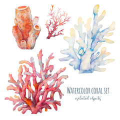 Watercolor coral set illustration. Hand drawn isolated underwater branches on white background. Sea life collection