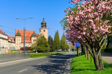 View of the City Government Office of Elblag through the flowering trees