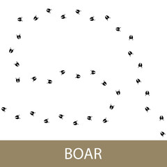 Footprints of Forest Animal, Traces of a Boar , Vector Illustration