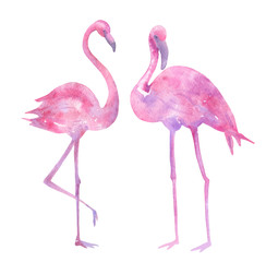 Watercolor illustration of a flamingo handmade.