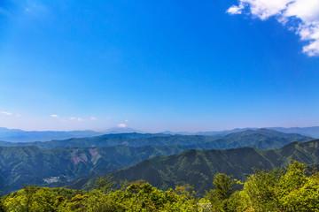 新緑の山と富士山