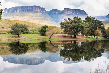 Aluminium Prints Reflection Northern Drakensberg mountains reflecting in water with trees and cloudy skies in the Royal Natal National Park, South Africa.