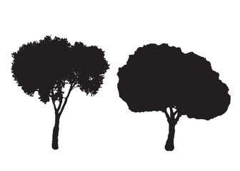 two silhouette trees vector set - white background