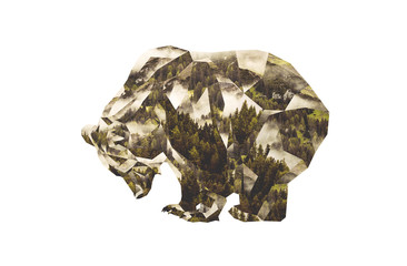 Low Poly Photocollage. Brown Bear and Coniferous Forest