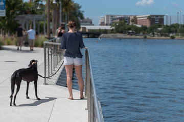 Back of Woman Standing with Her Dog