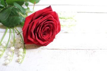 Rote Rose mit Maiglöckchen