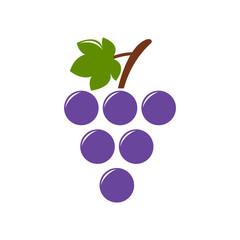 grapes icon, vector fruit illustration, nature wine symbol