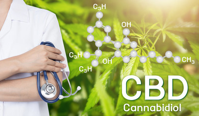 Doctor Image cannabis of the formula CBD.
