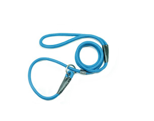 Blue pet leash on isolated white background.  Pet accessories concept.