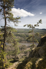 mountain, forest, river landscape in Sweden