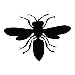 Hornet - Bee silhouette