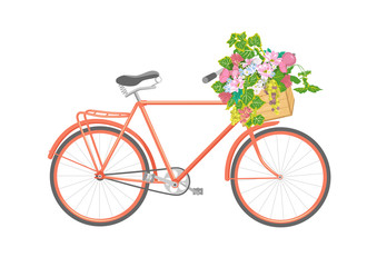 Bicycle decorated with floral bouquet with flowers and leaves in wooden box or basket. Vintage color hand-drawn illustration isolated on white background.