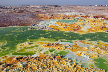 A huge green field with yellow spots of lava sulfuric volcanoes among the pink earth of the desert of Danakil, the Afar basin, the North of Ethiopia.