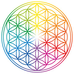 Flower of Life in rainbow colors. Geometrical figure, spiritual symbol, Sacred Geometry. Overlapping circles forming a flower like pattern with symmetrical structure. Illustration over white. Vector.