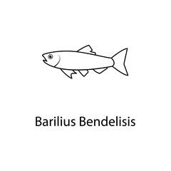 barilius bendelisis icon. Element of marine life for mobile concept and web apps. Thin line barilius bendelisis icon can be used for web and mobile. Premium icon