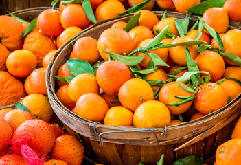 full frame close up of wooden buckets filled with ripe oranges and green leaves at a farmer's market