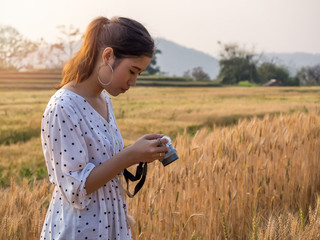 Young woman taking photograph a ladybug perched on grains of barley in a field of barley.