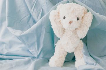 Cute teddy bear playful with fabric ,Happy feel concept