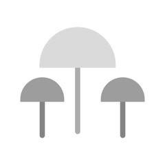 Mushrooms, oyster, food