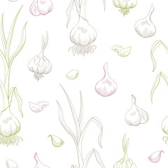 Garlic graphic color seamless pattern background sketch illustration vector