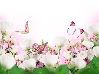 wall mural Bouquet of pink roses against a dark background  butterfly  non woven Butterflies Roses temporary or traditional wallpaper