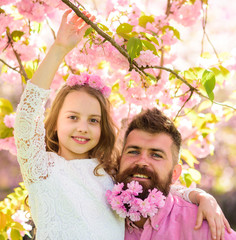 Girlish leisure concept. Girl with dad near sakura flowers on spring day. Father and daughter on happy faces hugs, sakura background. Child and man with tender pink flowers in beard, wreath on head.