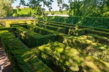 hedge maze in Vienna at castle Schönbrunn