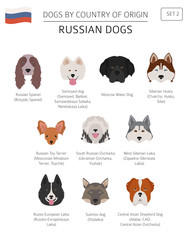 Dogs by country of origin. Russian dog breeds. Infographic template