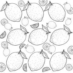 レモン 手描きの線画