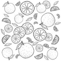 オレンジ 手描きの線画