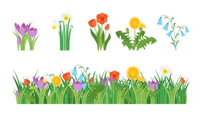 Cartoon Garden Flowers and Element Set. Vector