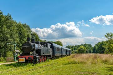 stary pociąg na stacji w Białowieży