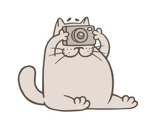 cute gray cat with camera. vector illustration