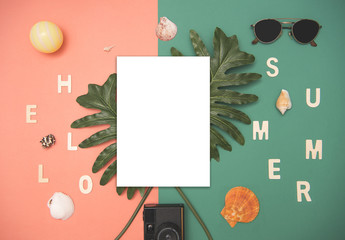 Top view paper mockup template nature tropical monstera palm leaf on color background. Flat lay.