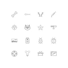Animals linear thin icons set. Outlined simple vector icons