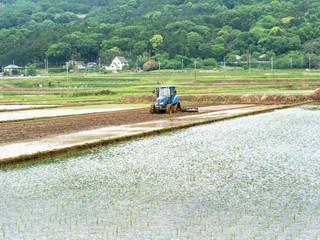 Rice paddy puddling
