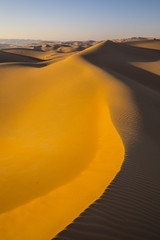 Rub al Khali desert, United Arab Emirates