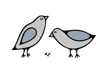 Couple of cute city birds by the meal.