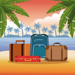 Beach and summer cartoon elements vector illustration graphic design