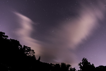 Starry sky with clouds and trees