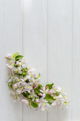 Spring background with apple blossom on white wooden desk. top view