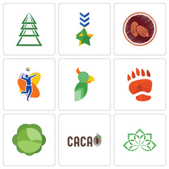 Set Of 9 simple editable icons such as holistic, , cabbage