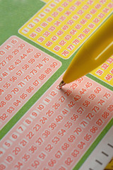 play the lottery by choosing the numbers